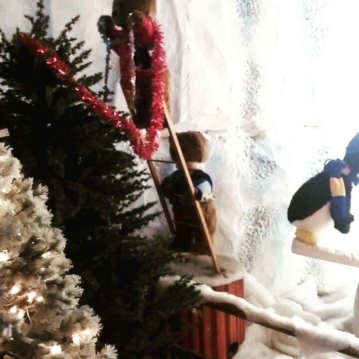 Great christmas nativity